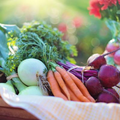 Edible Garden Calendar