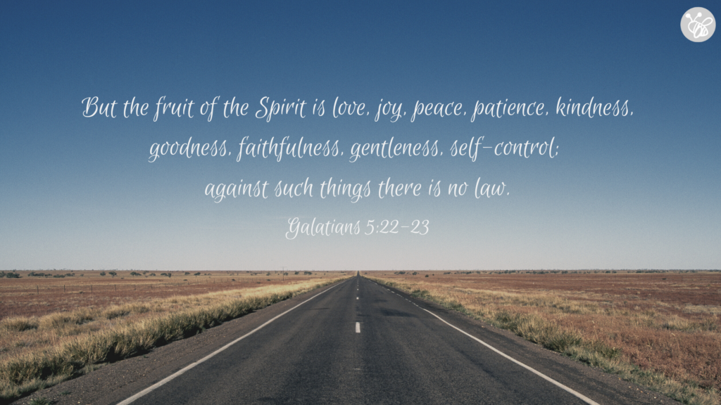 But the fruit of the Spirit is love, joy, peace, patience, kindness, goodness, faithfulness, gentleness, self-control;  against such things there is no law. Galatians 5:22-23
